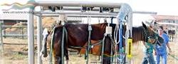 Barella per cavalli