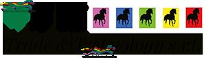 SM Trade presenta il nuovo logo
