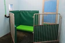 Box di Protezione Mobile – Separazione Fattrice Puledro
